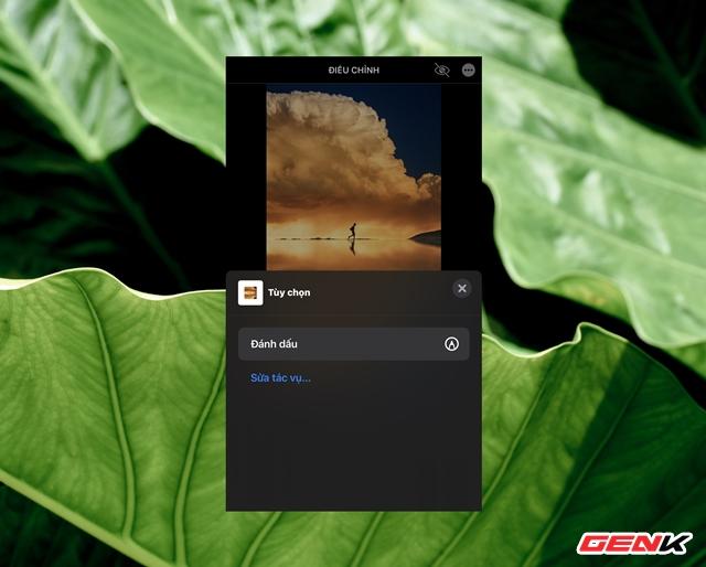 Cách sử dụng kính lúp trong chỉnh sửa ảnh để nhấn mạnh nội dung trên iPhone - Ảnh 4.