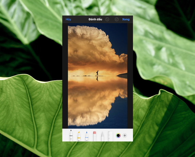 Cách sử dụng kính lúp trong chỉnh sửa ảnh để nhấn mạnh nội dung trên iPhone - Ảnh 5.