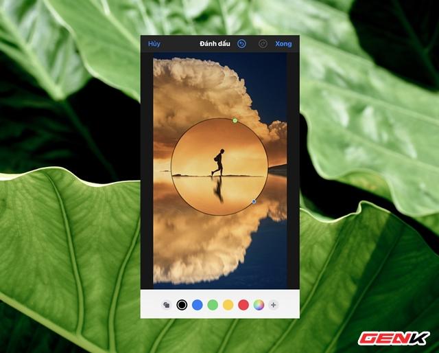 Cách sử dụng kính lúp trong chỉnh sửa ảnh để nhấn mạnh nội dung trên iPhone - Ảnh 9.