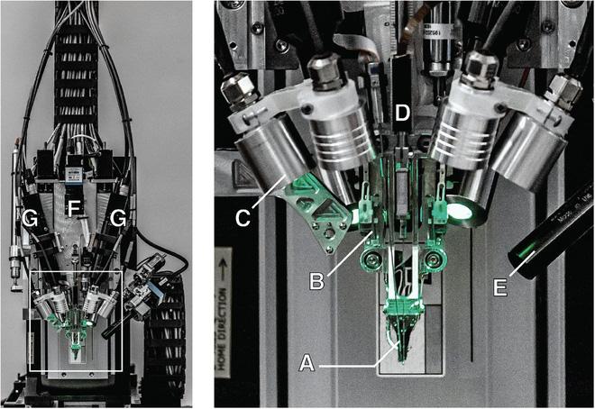 Neuralink và tham vọng cộng sinh với trí tuệ nhân tạo của Elon Musk - Ảnh 10.