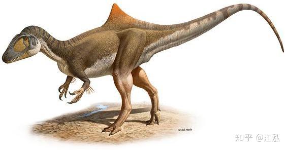 Loài khủng long ăn thịt có bướu kỳ lạ được tìm thấy ở Tây Ban Nha - Ảnh 8.