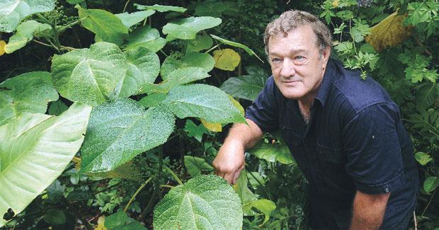 Đây là loài cây đáng sợ nhất thế giới, hãy tránh xa nó ngay nếu có thể - Ảnh 3.