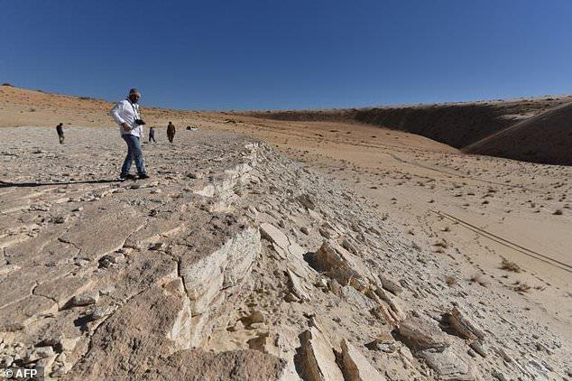Hồ nước cạn khô trên sa mạc hé lộ một loạt dấu chân 120.000 năm tuổi của tổ tiên chúng ta - Ảnh 3.