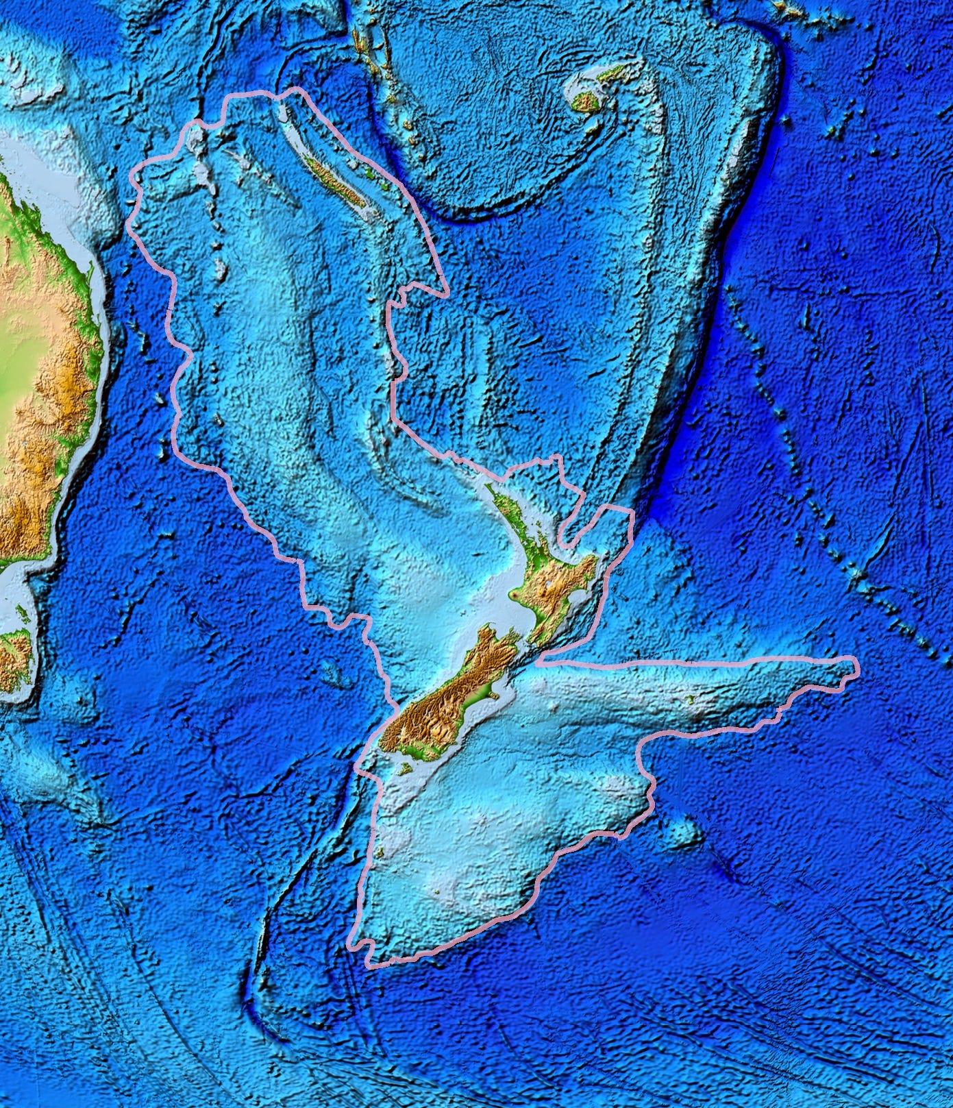 Chim cánh cụt cổ đại cao bằng người từng sống ở lục địa mất tích thứ 8 của Trái Đất - Ảnh 3.