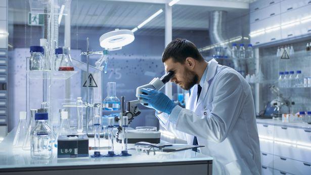 Nam giới có thể sẽ tuyệt chủng vì nhiễm sắc thể Y đang dần biến mất? - Ảnh 3.