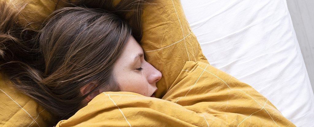 Cái nào có trước: Giấc ngủ hay Bộ não? Các nhà khoa học cho rằng họ đã tìm ra câu trả lời - Ảnh 3.