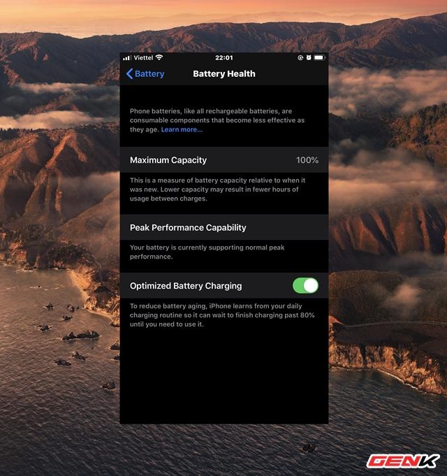 Cách chẩn đoán và khắc phục lỗi iPhone khởi động lại liên tục - Ảnh 11.