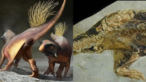 Cuối cùng thì giới cổ sinh vật học cũng đã tìm ra được cần tăng dân số của khủng long - Ảnh 1.