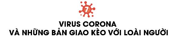 Một biên niên sử về virus: Từ những thiên thần của tiến hóa tới cơn ác mộng COVID-19 - Ảnh 17.