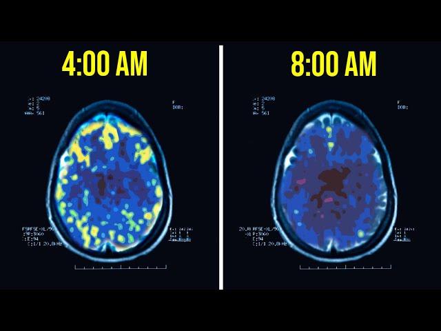 Lý do các tỷ phú yêu thích thức dậy lúc 4h sáng: Não thành miếng bọt biển, giúp họ có lợi thế hơn hẳn người thường - Ảnh 1.