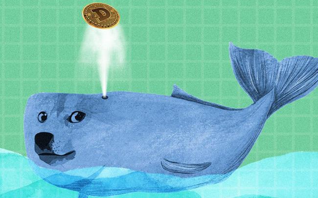 Bất ngờ một cá mập đang sở hữu 2,1 tỷ USD tiền ảo Dogecoin - Ảnh 1.