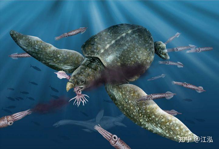 Phát hiện loài rùa biển cổ đại còn to lớn hơn cả một cái ô tô - Ảnh 10.
