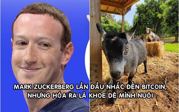 Mark Zuckerberg khoe ảnh nuôi dê, đặt tên là Bitcoin: Hút hơn 400.000 lượt thích sau hơn 3 giờ đăng tải - Ảnh 1.
