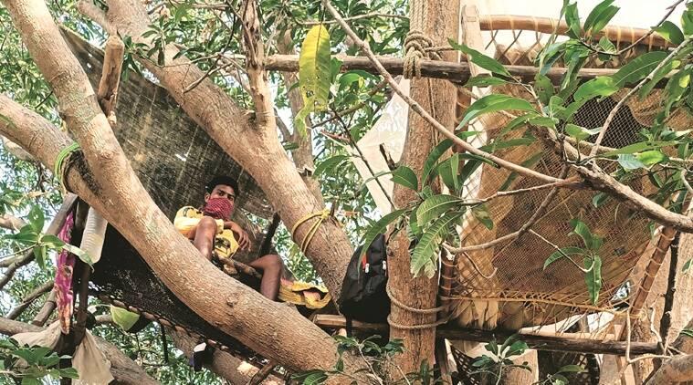 Ấn Độ: Nhiều bệnh nhân Covid-19 tự cách ly hàng chục ngày trên cây như trong phim Tarzan - Ảnh 4.