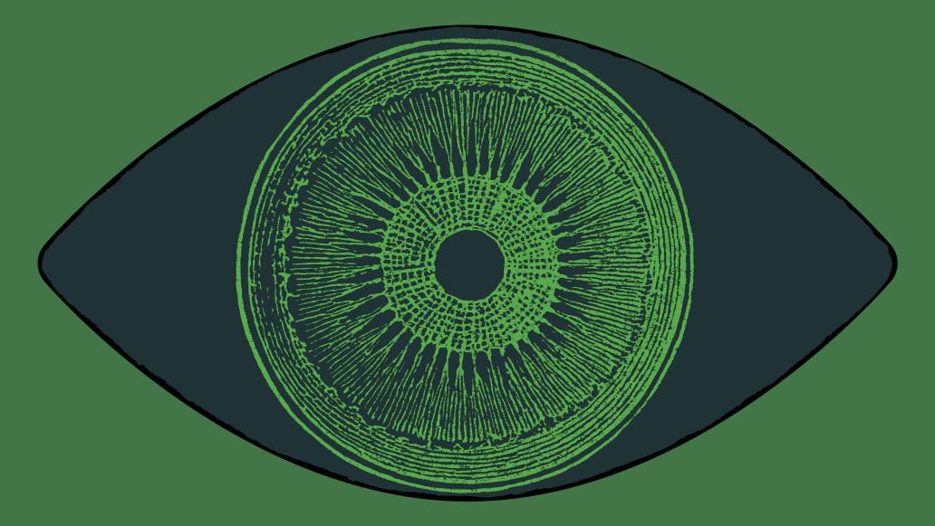 Đột phá: nhờ cấy gen tảo vào mắt, một người khiếm thị lấy lại được một phần nhỏ thị lực - Ảnh 1.