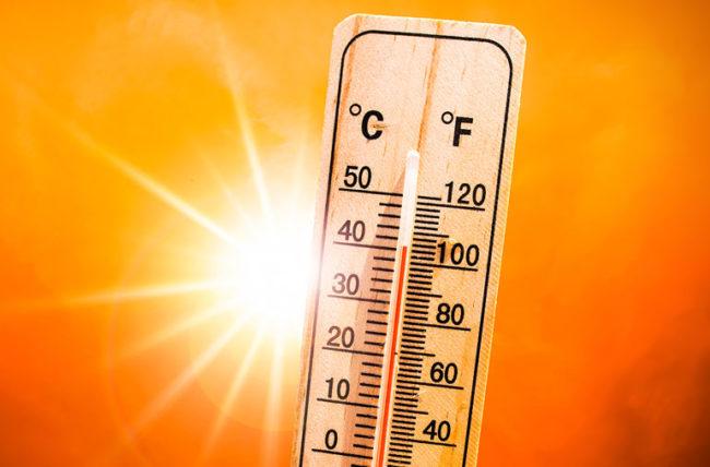 Nếu thân nhiệt con người là 37 độ, tại sao một ngày hè 37 độ vẫn khiến ta thấy nóng bức đến vậy? - Ảnh 1.