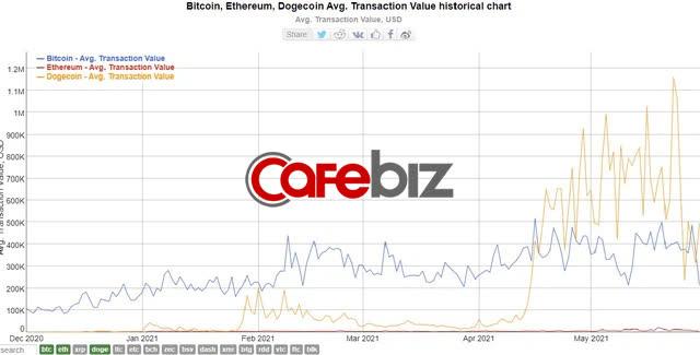 Bóng bóng Dogecoin nổ tung: Giá trị giao dịch có ngày giảm 93%, các 'cá voi' nắm giữ nhiều nhất lo sợ - Ảnh 2.