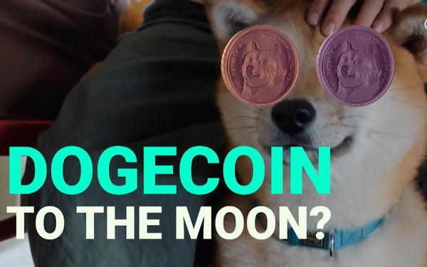 Bóng bóng Dogecoin nổ tung: Giá trị giao dịch có ngày giảm 93%, các 'cá voi' nắm giữ nhiều nhất lo sợ - Ảnh 1.