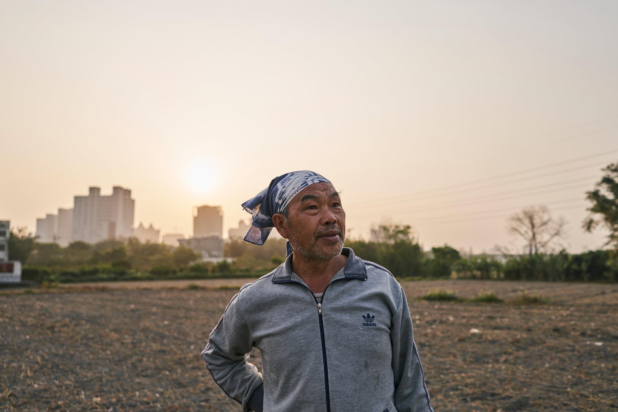 Chọn chip hay chọn lúa: Câu hỏi đang khiến Đài Loan phải đau đầu - Ảnh 4.