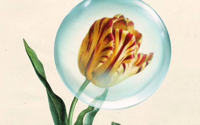 Từ cơn sốt hoa tulip đến sự bùng nổ của cổ phiếu internet: Diễn biến thị trường hiện có điểm gì tương đồng so với những quả bong bóng trước đây? - Ảnh 2.