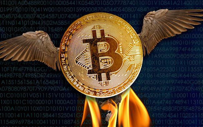 Bitcoin vừa có lần lột xác đầu tiên sau 4 năm sóng gió - Ảnh 1.