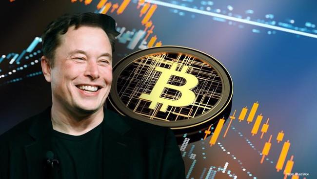 """""""Sóng gió"""" Bitcoin: Nhà đầu tư thành con bạc? - Ảnh 5."""