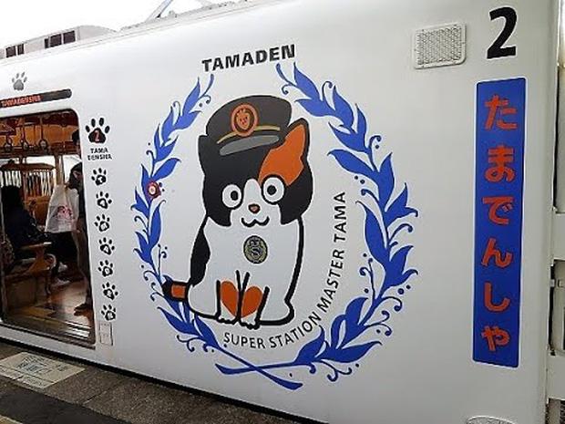 Chỉ nhờ một cô mèo hoang, công ty Nhật Bản lãi to 280 tỷ, thoát khỏi cảnh phá sản trong gang tấc - Ảnh 9.