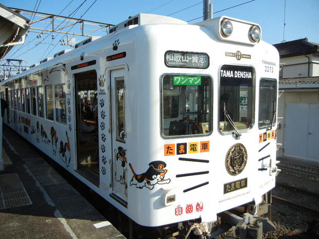 Chỉ nhờ một cô mèo hoang, công ty Nhật Bản lãi to 280 tỷ, thoát khỏi cảnh phá sản trong gang tấc - Ảnh 10.