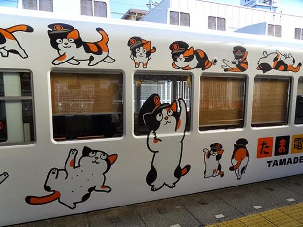 Chỉ nhờ một cô mèo hoang, công ty Nhật Bản lãi to 280 tỷ, thoát khỏi cảnh phá sản trong gang tấc - Ảnh 12.