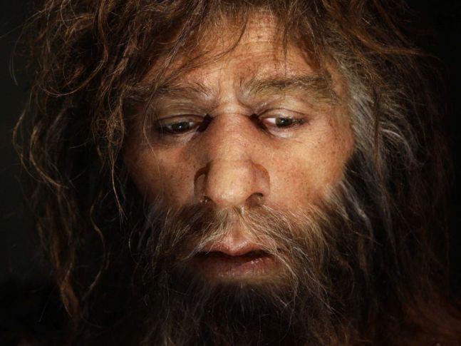 Các nhà nghiên cứu đã giải mã nhóm máu của người cổ Neanderthal và Denisovan - Ảnh 3.