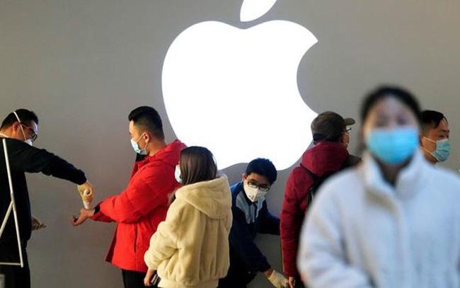 Bí quyết để Apple sống tốt trong đại dịch: Tìm thấy cỗ máy tăng trưởng mới, cổ phiếu vẫn liên tục hút tiền của nhà đầu tư - Ảnh 1.