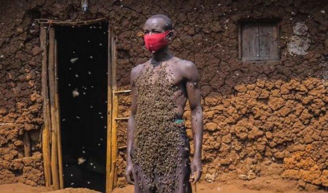 Người đàn ông tự xưng là Vua ong: điều khiển được ong như Tiểu long nữ, cả đời chưa bao giờ bị ong đốt - Ảnh 1.