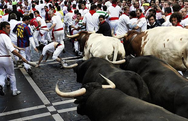Bò tót bị đám đông kích động