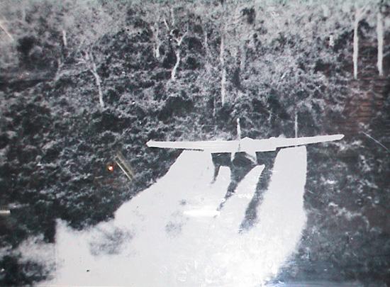 Tìm hiểu về chất độc màu da cam và nỗi ám ảnh sau chiến tranh Việt Nam