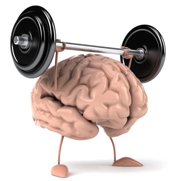 Những sự thật về bộ não ít người biết tới (phần 1)