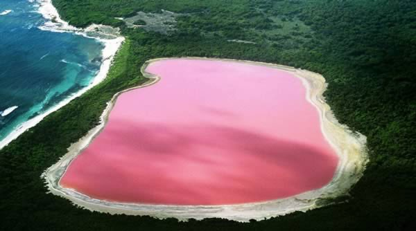 Hồ Hillier nằm ở Middle Island, hòn đảo lớn và nổi tiếng nhất phía tây Australia. Sắc hồng rực rỡ là đặc trưng độc đáo nhất của nó. Nước không gây hại cho người và không đổi màu khi con người mang nó ra khỏi hồ. Các nhà khoa học vẫn chưa thể lý giải được tại sao nước trong hồ có màu hồng.