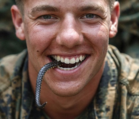 Một binh sĩ thủy quân lục chiến Mỹ đùa nghịch với đuôi rắn.