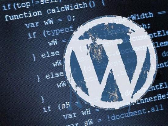 Nhiều website Việt Nam dính lỗ hổng WordPress đã bị hacker tấn công và để lại cửa hậu trên hệ thống. Ảnh minh họa. Nguồn: Internet.