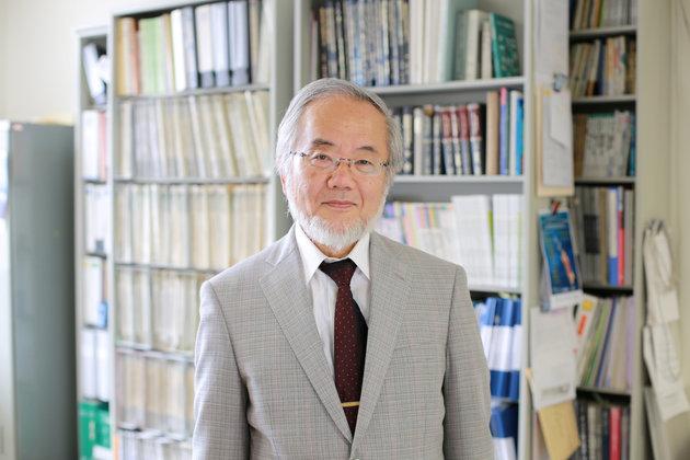 Chân dung Yoshinori Ohsumi, nhà khoa học người Nhật giành giải Nobel Sinh lý học và Y khoa năm 2016