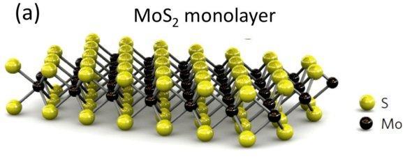 Một lớp MoS2.