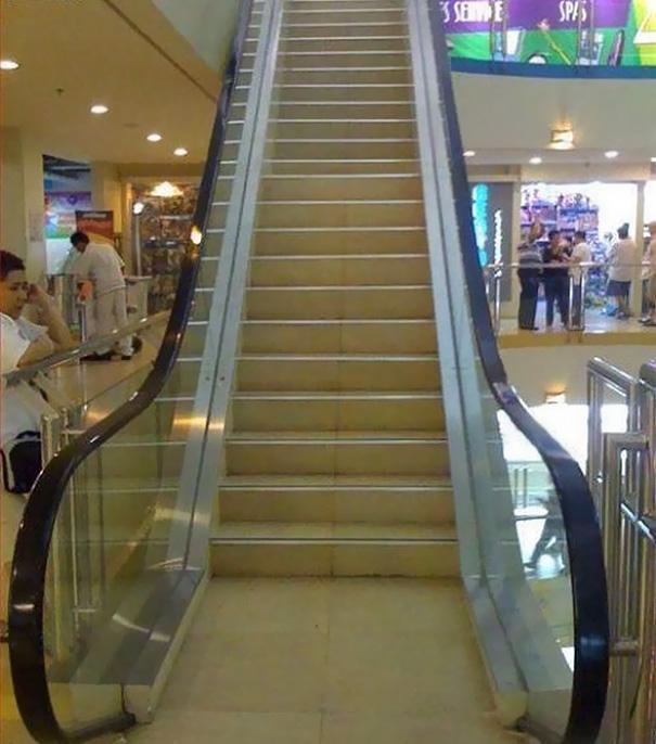 Để mà nói, ai thiết kế ra chiếc thang cuốn này thực sự rất có tâm. Gần đây số người chết vì béo phì đã nhiều hơn chết đói...