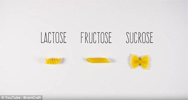 Một số ví dụ về các loại đường được Vanessa minh họa sáng tạo bằng mỳ ống