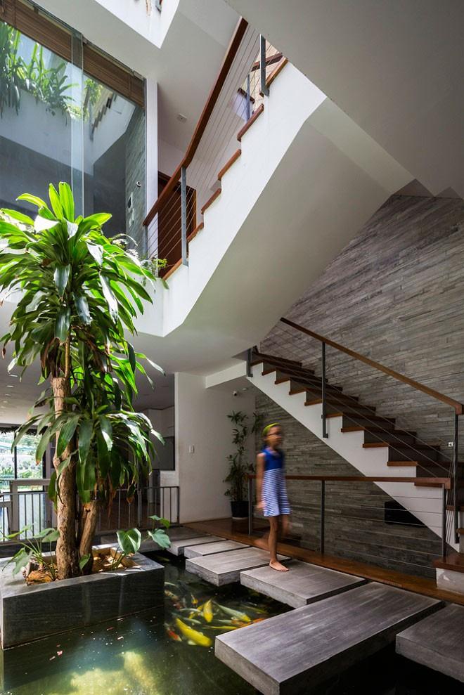 Một hồ cá Koi được đặt giữa nhà, gần khu vực cầu thang vừa lấy sáng được từ giếng trời, vừa làm mát nhà và khiến không gian trở nên sinh động.