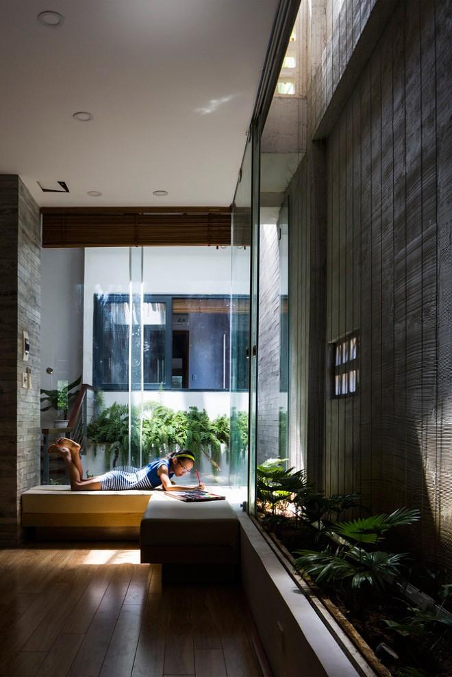 Thay vì tường gỗ hay kim loại bí bách, gia chủ chọn sử dụng tường kính để nhà thêm sáng hơn.