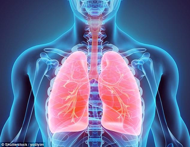 Với kích thước gần bằng 1 phần tỷ mét, hạt nano trong khí thải xe cộ có thể đâm xuyên phổi để vào thẳng máu bạn