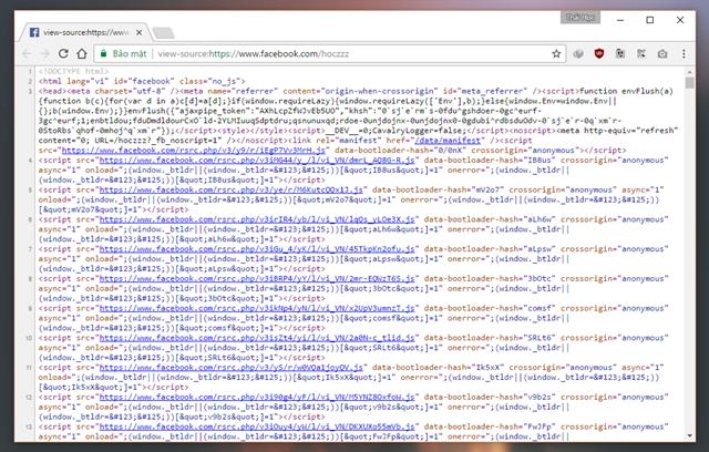 Một tab trình duyệt khác mở ra và nó sẽ hiển thị mã nguồn của trang Facebook bạn thao tác.