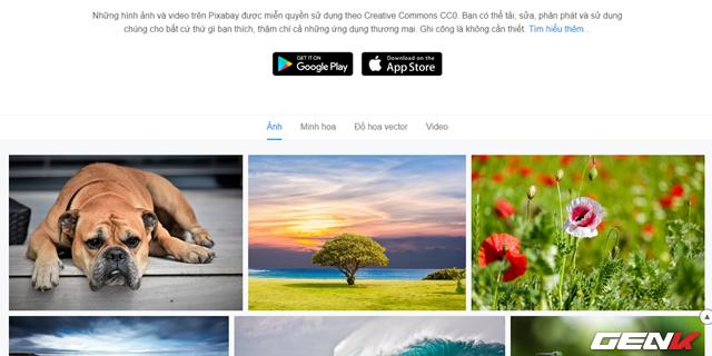 Tất cả hình ảnh trên Pixabay điều được phát hành theo giấy phép Creative Commons Zero. Điều này có nghĩa là bạn có thể thoải mái sửa đổi và sử dụng chúng cho bất cứ mục đích gì bạn thích, bao gồm cả mục đích thương mại mà không cần phải liên hệ đến tác giả gốc của hình ảnh.