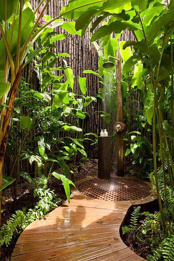 Nắng, gió , cây xanh và tiếng chim hót. Cả một khu rừng nhiệt đới đã hiện diện trong căn phòng của bạn!
