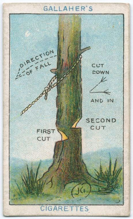 Đây là 10 mẹo vặt từ 100 năm trước, vẫn hữu dụng cho đến tận bây giờ - Ảnh 8.