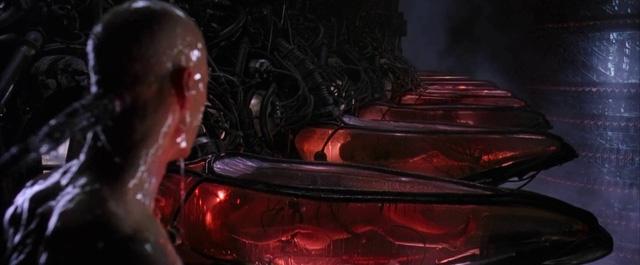 Nhân vật chính - Neo cũng chỉ là một trong số hàng tỷ con người ở cánh đồng năng lượng